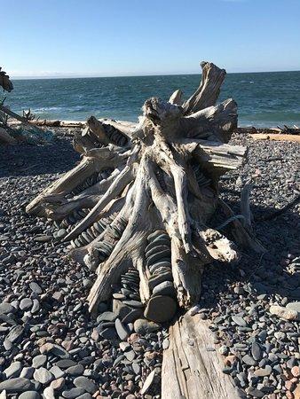 Advocate Harbour, Canada: Driftwood Sculpture