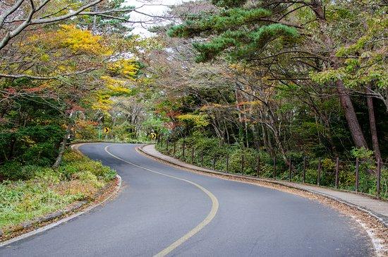 Hallasan National Park: 靈室售票亭往登山口,攝於十月底 from Yeongsil ticket office to Yeongsil trailhead, late-Oct