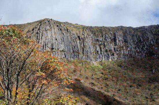 Hallasan National Park: 靈室路線,攝於十月底 Yeongsil trail, late-Oct