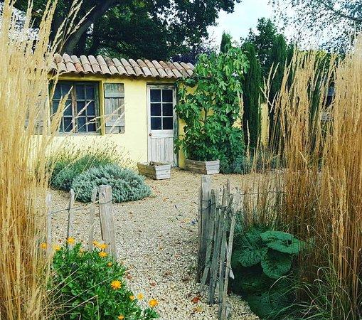 Capel Manor Gardens: Vincent van Gogh garden