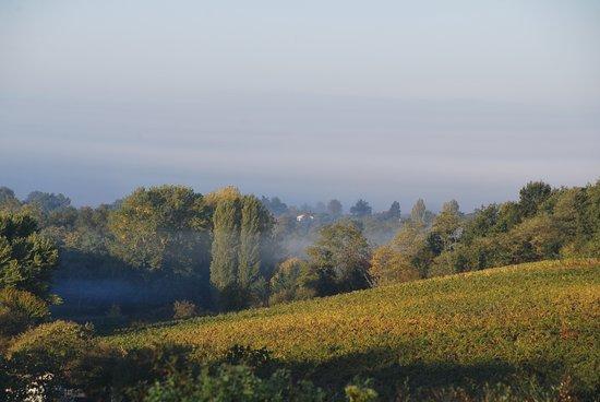 Castillon-la-Bataille ภาพถ่าย