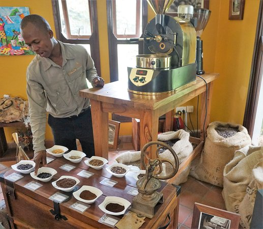 Arusha Coffee Lodge: Plantation tour and roasting demonstration well worth it if you like good coffee.