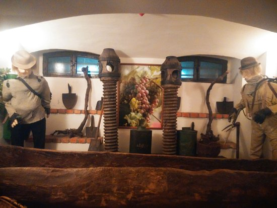 Museum of Ancient Torture and Wine in Zielona Gora