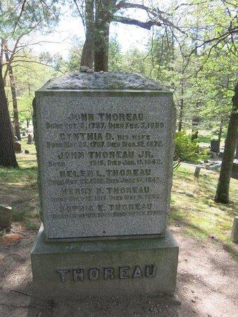 Concord, MA: Thoreau's grave