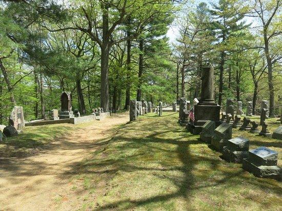 Concord, MA: Cemetery trees