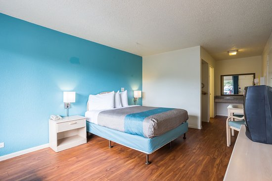 Spring Hill, FL: Guest Room