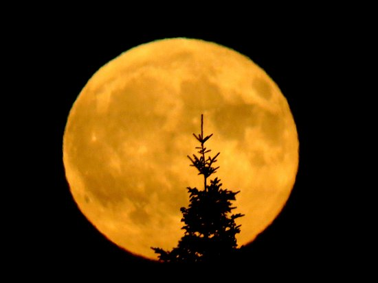 Jacksonville, Canada : Full moon rising over the Transcanada