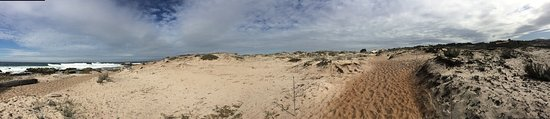Asilomar State Beach: photo2.jpg