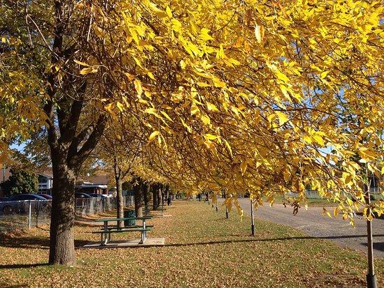 Parc Laviolette