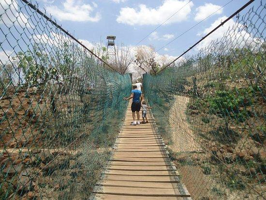 Parque Bicentenario Puente de Calderon
