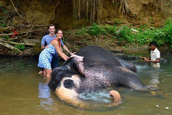 Kegalle, Sri Lanka: Bath time!