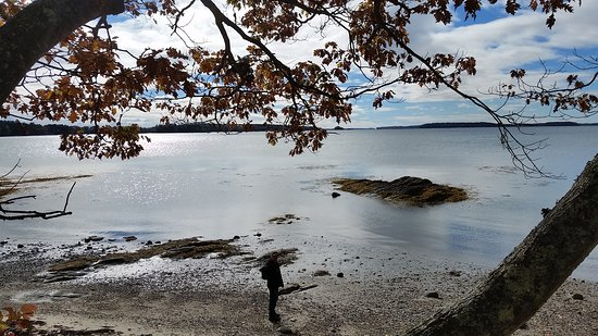 Recompence Shore Campground at Wolfe's Neck Farm: 20161026_113050_large.jpg