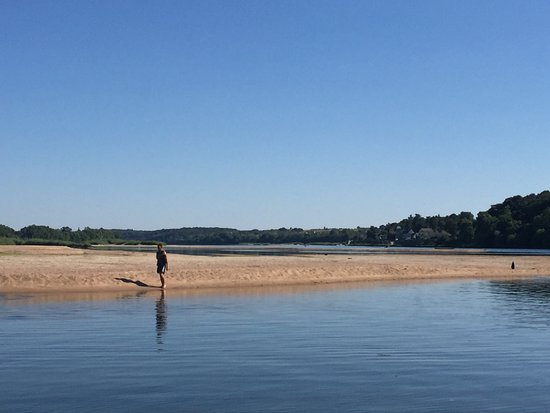 Fontevraud-l'Abbaye, Francia: La Loire dans toute la splendeur de l'été 2016