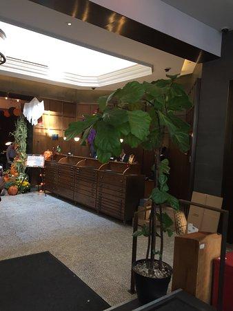 貝爾克萊爾酒店照片