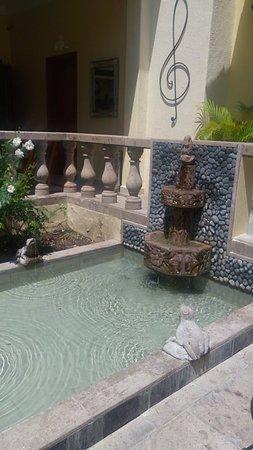 Hotel Villa San Francisco: Nuestra fuente