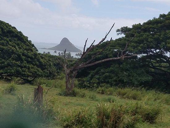 Kaneohe, Hawaï : 20161014_135333_large.jpg