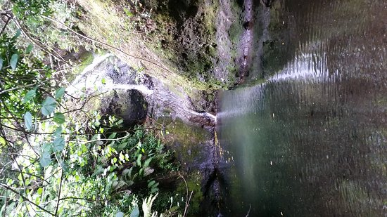 Wigmore's Waterfall: 20161019_122836_large.jpg
