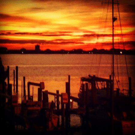 Gulf Breeze, FL: IMG_20161015_045359_large.jpg