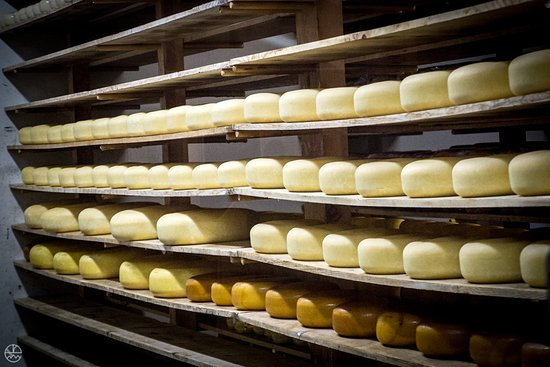 Oakdale, Californien: Cheese aging in the back
