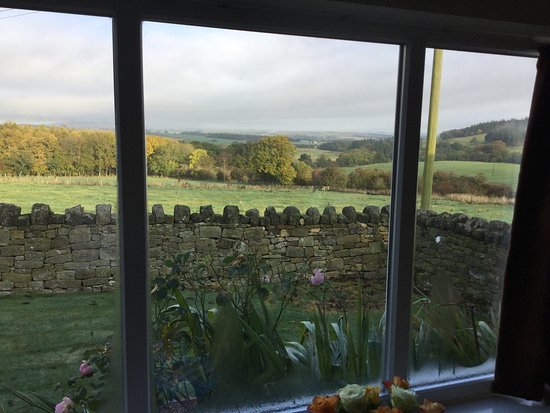 Edlingham, UK: These are views from inside the cottage and from nearby looking towards the farm. All fantastic!