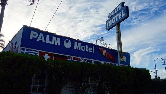 Palm Motel Foto