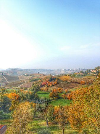 Castelnuovo Calcea, Italia: photo2.jpg