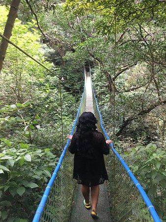 Rincon de La Vieja, Costa Rica: Swinging Bridge