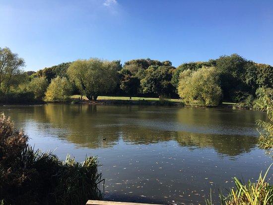 Gillingham, UK: photo7.jpg
