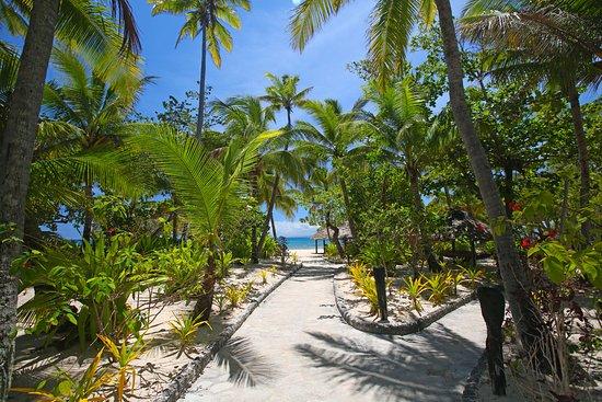 Tavarua Island Resort: scenic paths to between bures