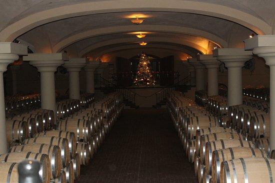 Healdsburg, CA: cellar room