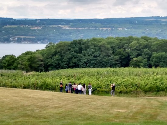 Experience! The Finger Lakes Tours