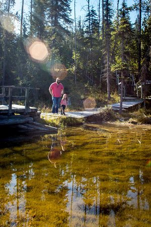 Golden, Canada: Exploring the pond on the ranch.