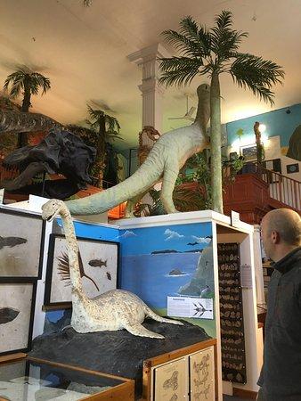 Lyme Regis, UK: photo0.jpg