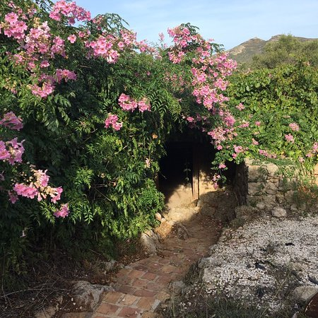 Jalón, España: IMG-20161016-WA0038_large.jpg