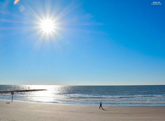 Casa Del Mar Beachfront Suites: Bewertungen, Fotos ...