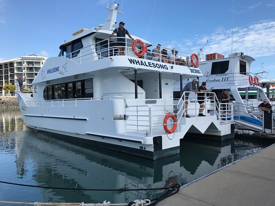Hervey Bay, Australien: Whalesong at Urangan Boat Harbour