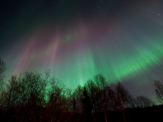 Anchorage, AK: Vibrant blues, pinks and greens sway in the sky, marking the path of the aurora borealis.