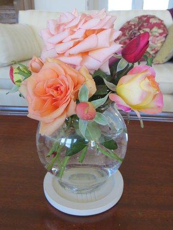 Abingdon, فيرجينيا: More roses in October!
