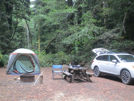 Sinkyone Wilderness State Park Usal Beach Camp Site 18