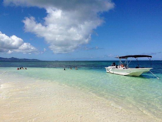 Cool Caraibes: photo0.jpg