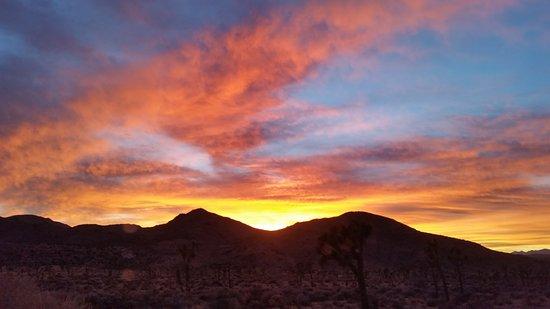 Twentynine Palms, Californië: Sunset in Joshua Tree National Park.