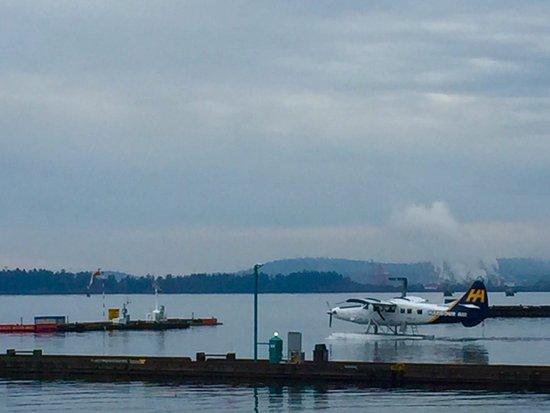 Nanaimo, Canada: photo2.jpg