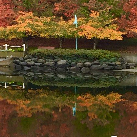 Nanaimo, Canada: photo3.jpg