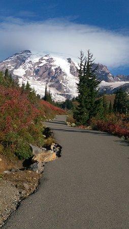 Mount Rainier: IMAG8068_large.jpg