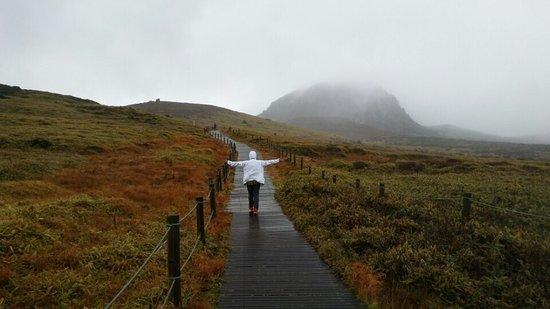 Hallasan National Park: 구름에 가린 백록담