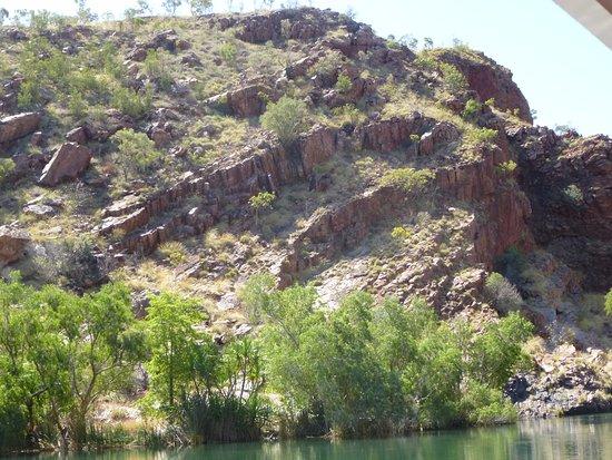 Kununurra, Australien: Spectacular shoreline along the Ord River