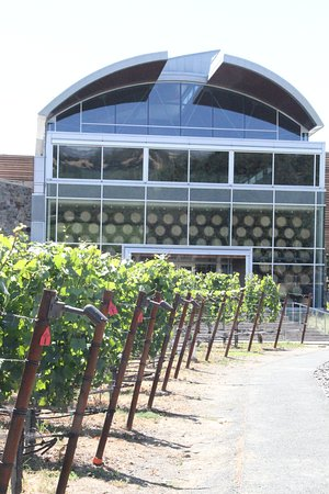 Williams Selyem Winery : The winery