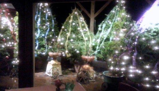the white barn restaurant christmas tree display room