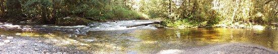 Sechelt, แคนาดา: Chapman Creek