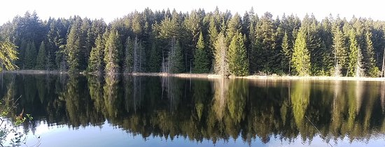 "Sechelt, Kanada: The ""mirror"" at Trout Lake"